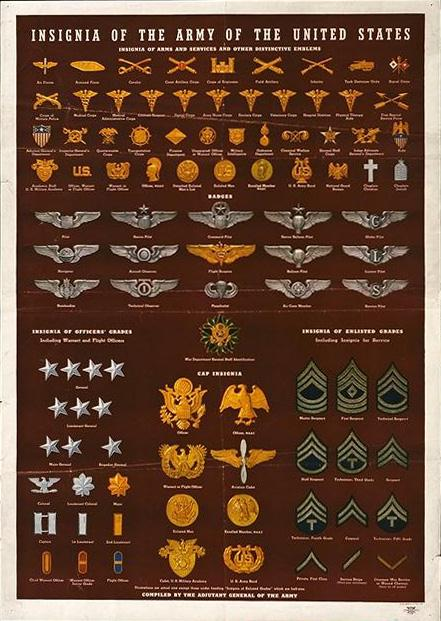 Military Basics and rank and insignia chart | The Scoop on History ...