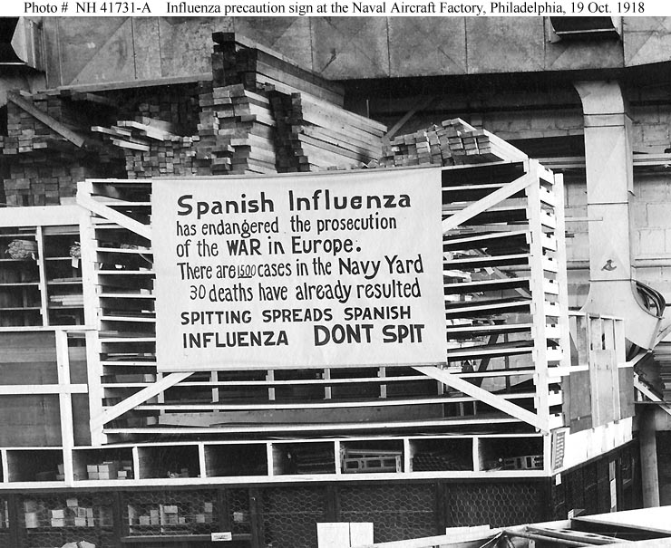 The 1918 Influenza Pandemic | The Scoop on History-APUSH and more